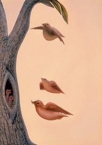 bird face_hirondellina