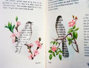 livres oiseaux
