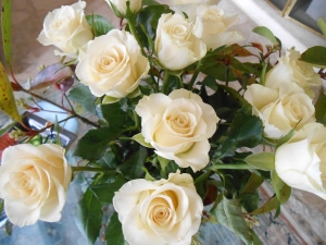 roses_mariage_hirondellina