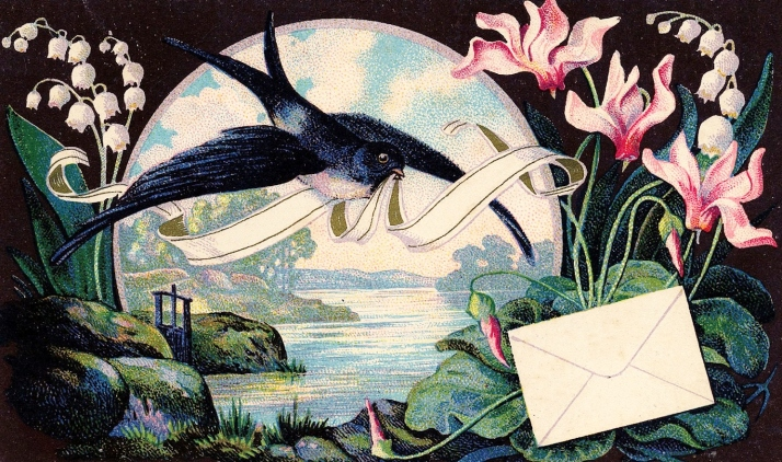Swallow-lily-Vintage-GraphicsFairy2