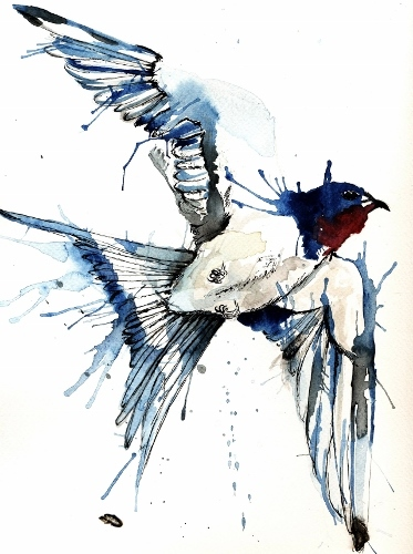 swallow blue (373x500)