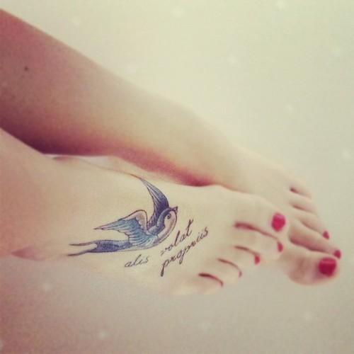 pieds nus (500x500)