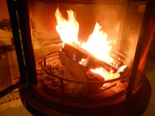 feu hirondellina (500x375)