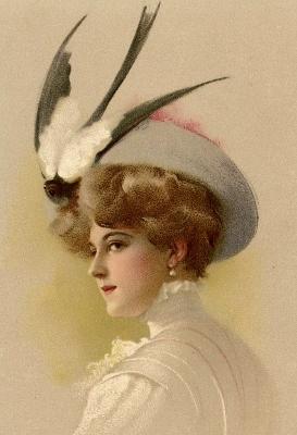 hat (273x400)