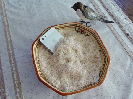 Natel riz